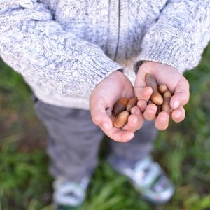 Child_Holding_Acorns