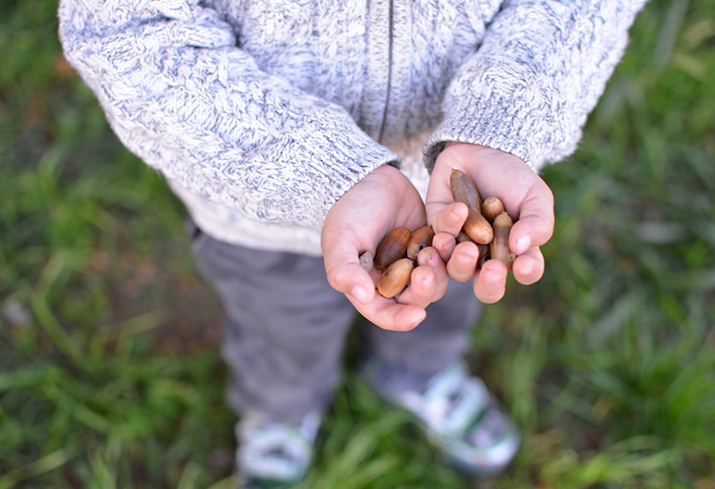 Child_Holding_Acorns